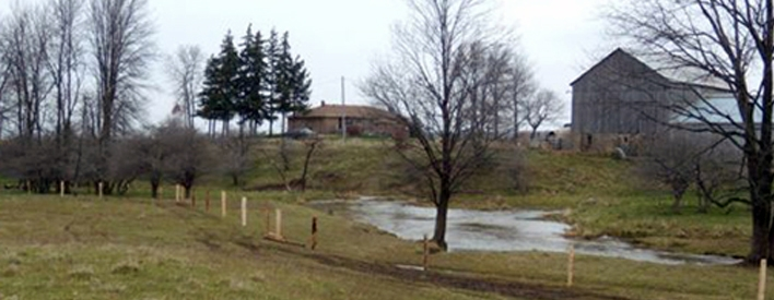 Exclusion fencing along Pine River to help keep cattle away and to protect the water course.