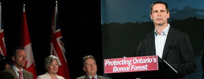 Protecting Ontario's Northern Boreal Forest