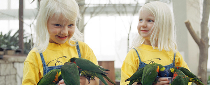 A couple of children make friends with some parrots at Niagara-on-the-Lake.